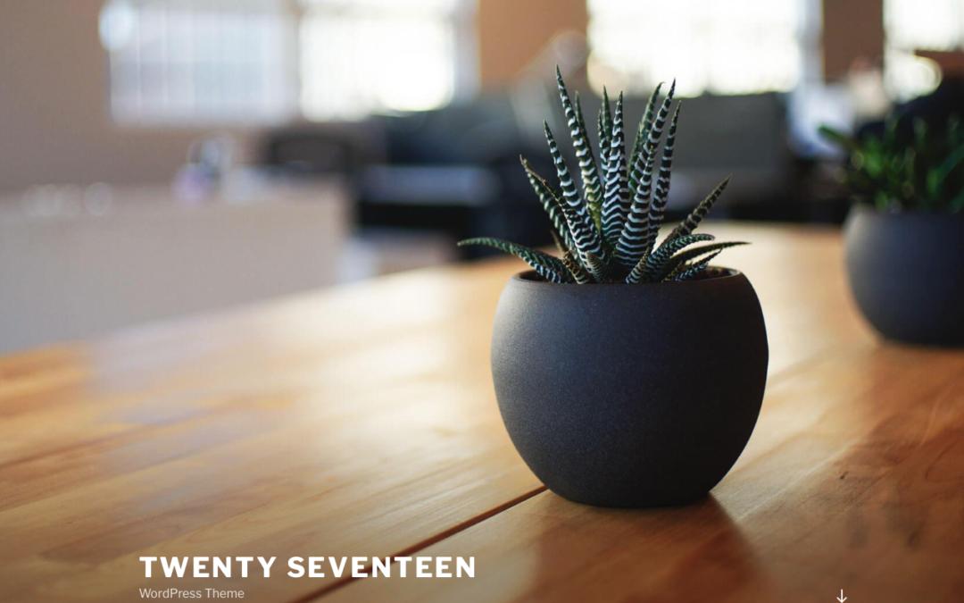 Twenty Seventeen WordPress Theme: Deutsche Anleitung